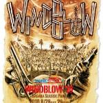2010年8月28(土)29(日)静岡県牧之原市「相良シーサイドパーク」でビーチフェス『WINDBLOW'10』開催決定!