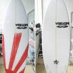 WEBSTER SURFBOARDS  NEW MODEL