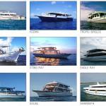 2013モルディブボートトリップ予約開始(アイランズブルー)