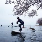 参加者募集!お花見SUPツアー/【桜SUPクルーズ・琵琶湖2013】(愛知県大府市)
